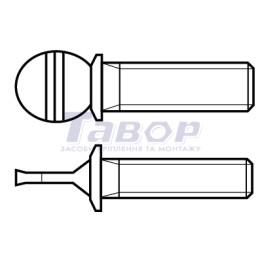Гвинти з накатаною головкою і фланцем холодного штампування TN 1319