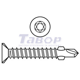 Саморіз потайна головка з буром широкий крок [Torx]